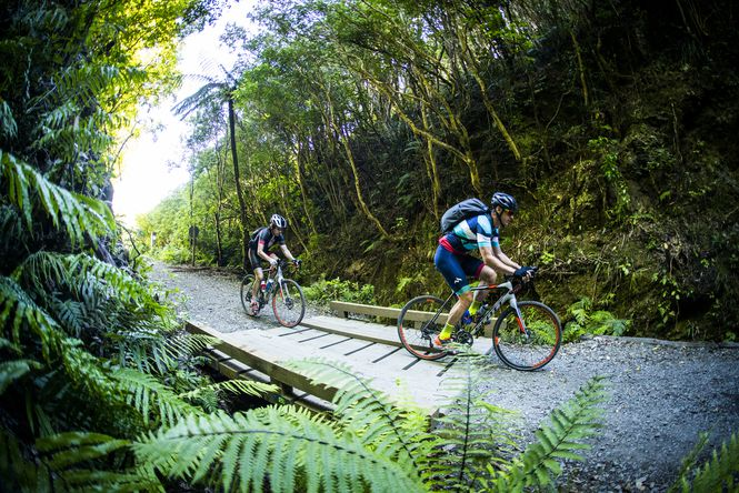 Cycling in the Remutaka Forest Park.