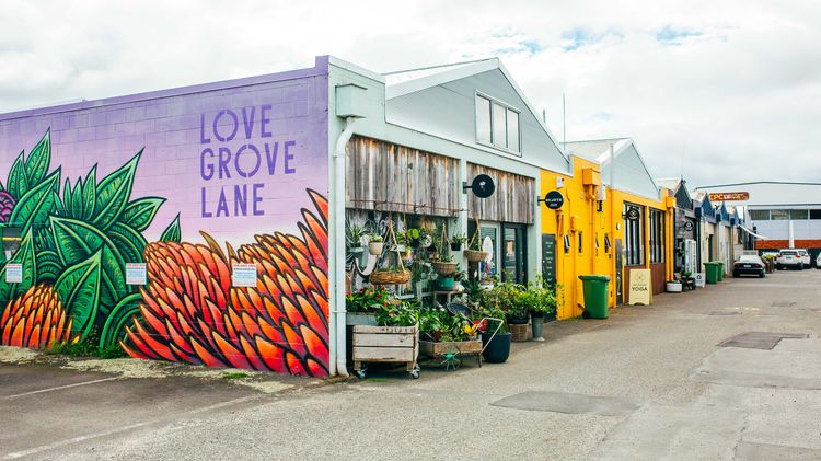 The exterior of Love Grove Lane in Hamilton.